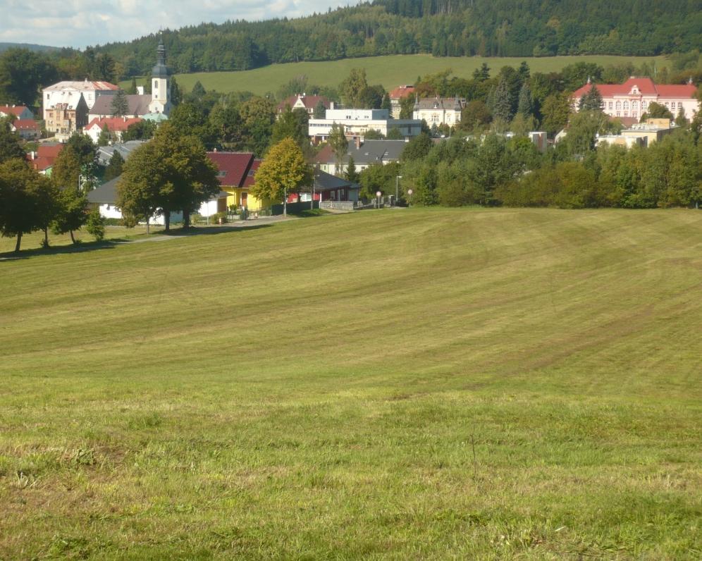 Komerční pozemek 40.500 m2 v těsné blízkosti města Velký Šenov ve Šluknovském výběžku - cena 1.000.000 Kč